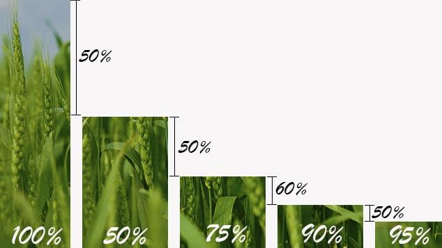 Corn måler-min.jpg